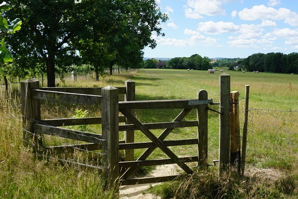 Kissing Gate looking towards Town Place