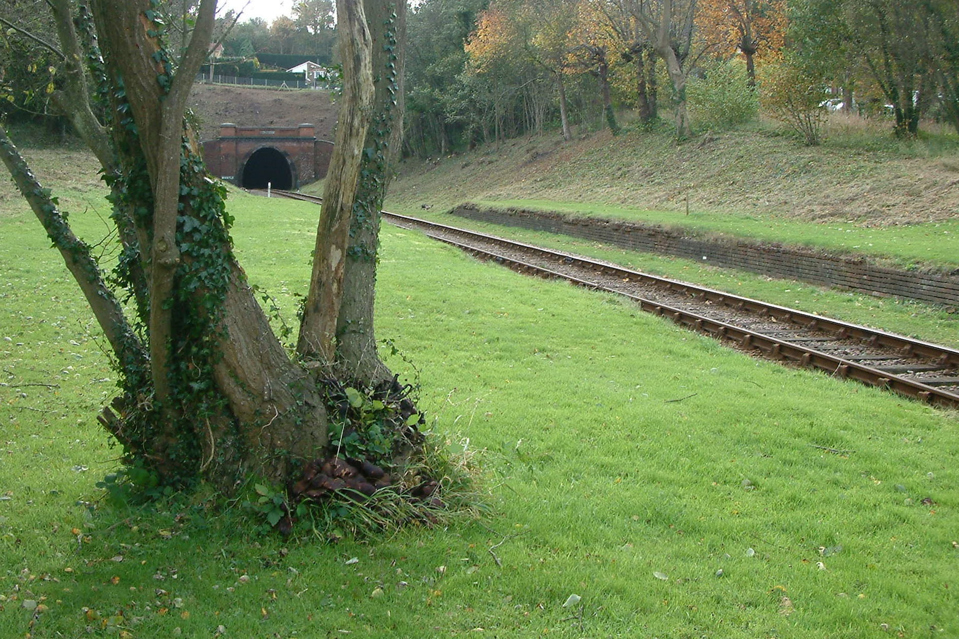 West Hoathly Tunnel from West Hoathly Station foot crossing